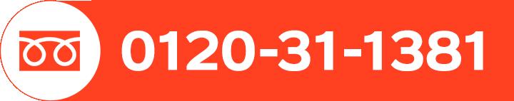 0120-31-1381